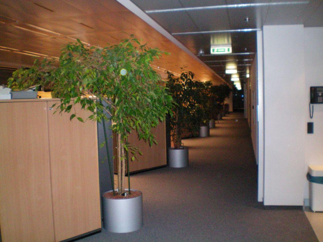 Neuer Bürostandort Avaya